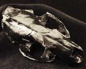 Halloween skull resin skunk skull - Urban Hardwear