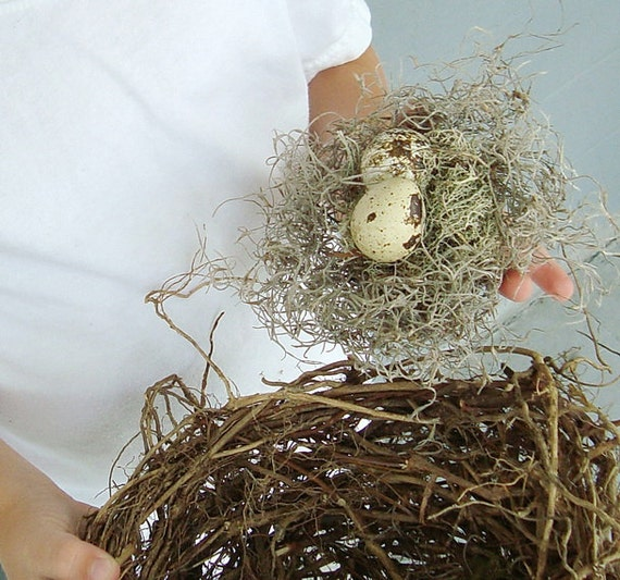 Faux Birds Nest with Natural Eggs Mossy Rustic Outdoors