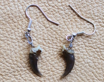 Real red fox claw earrings on fish hook ear wires