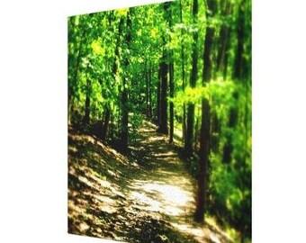 BACK TO SCHOOL Sale Original Photography, Landscape/Colour/Trees/Park/Mystic Walk, 8 x 8 Print