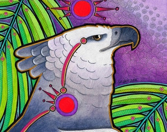 Red Circle Harpy Eagle