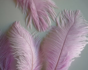 VOGUE OSTRICH PLUMES , Pale Wisteria Pink  /   1 piece / 541