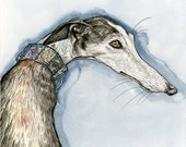 A Little Cheeky - Greyhound Art Print - 8 x 8 inch