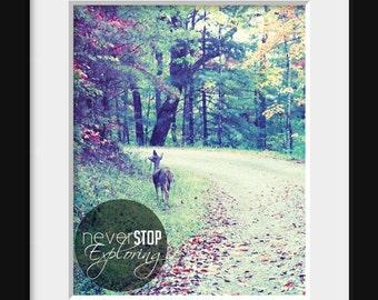 Never Stop Exploring - Inspirational Quote, Fine Art Photography Print 8 X 10 by Jennifer Jackson