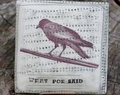 Poe's Raven Wall Pillow by Bunny Safari
