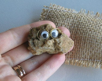 Real Pet rock wearing glasses with natural smile and burlap stuffed pillow