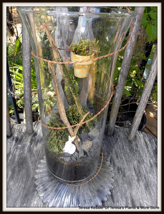 Ornate Glass & Wire sculpture Moss terrarium with bunny-Large Live Moss terrarium-Mini moss pot hanger included