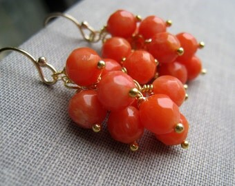 Orange Coral earrings, orange or pink coral dangle earring, gold or silver, wire wrapped jewelry