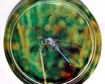 Waterlily OR Dragonfly Photographic Art Wine Bottle Coaster, Glass Paperweight, Nature Trinket Dish, Catch All Dish, Functional Home Decor