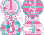 Baby Girl 1st Year Stickers Baby Months Stickers Girl 1 -12 Months stickers Pink Flamingoes Tropical Girl Nursery Baby Growth Keepsakes