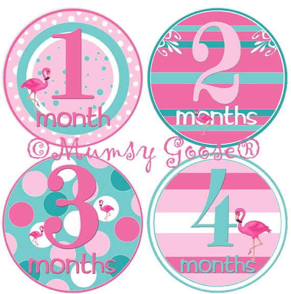 Baby girl 1st year stickers baby months stickers girl 1 12 for Stickers pared bebe