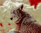Coyote Art Native American Totem Animal Textured Red Wilderness Wildlife Wild Home Decor Southwestern Wall Hanging Giclee Print 8 x 10