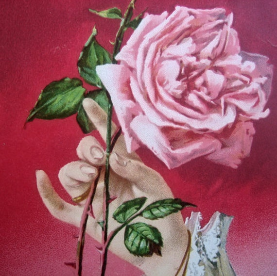 Antique Victorian rose postcard, with hand 1900s
