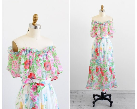 vintage 1970s dress / floral poppies dress / 70s Poppy Floral Print Grecian Gardens Dress