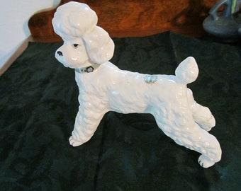 Vintage  Poodle figurine ( Bone China) Ardalt Japan - Lenwile China Verithin 1950's ADORABLE
