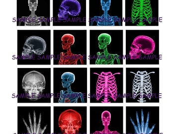 INSTANT DOWNLOAD...Xray Skeletons... Images Collage Sheet for Scrabble Tile Pendants ...Buy 3 get 1