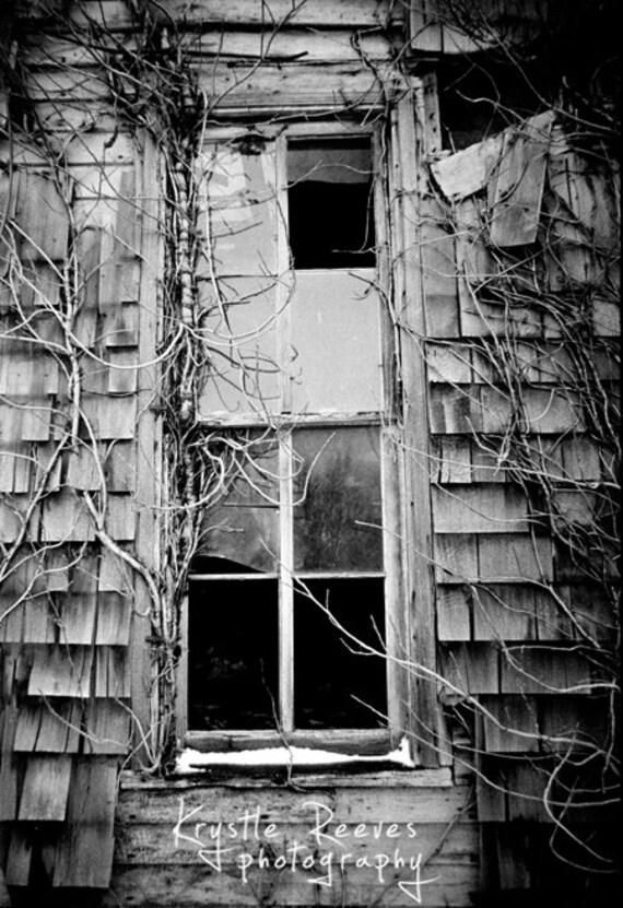 Forgotten Window (8x12 print)