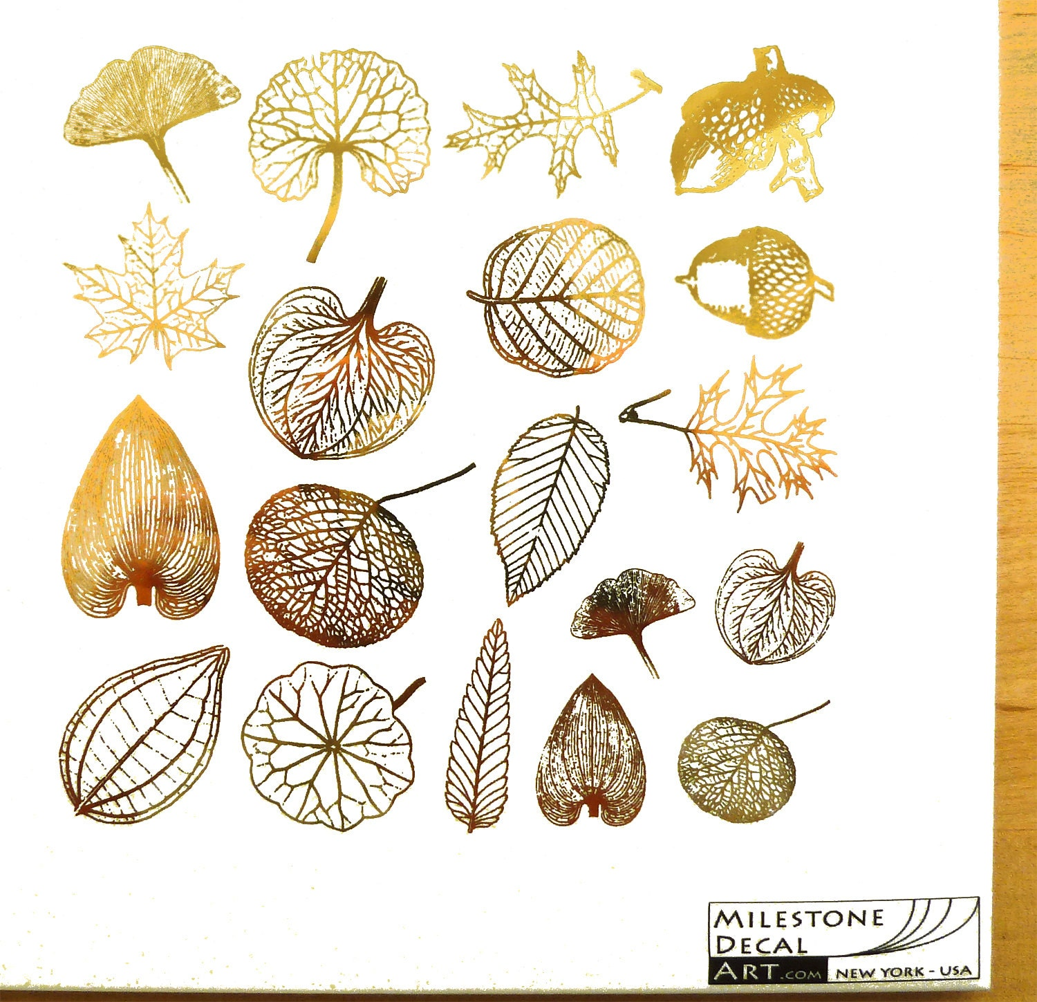 Leaf Skeleton Decals