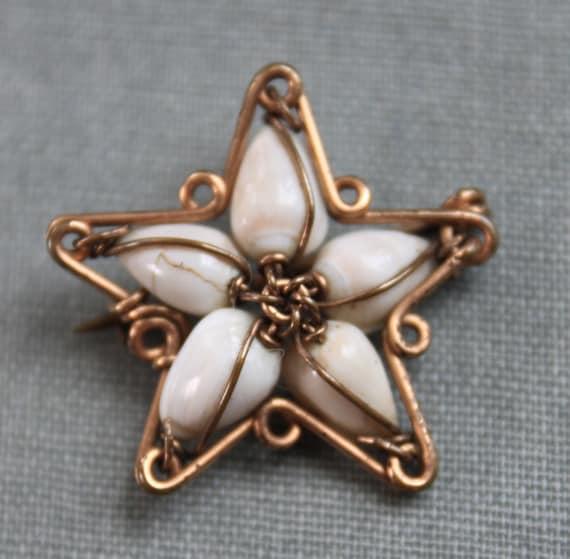 Victorian Star Seashell Brooch / Seaside Holida
