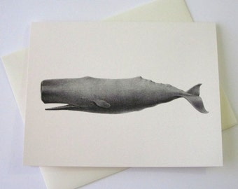 Whale Note Cards Stationery Set of 10 Cards with Matching Envelopes