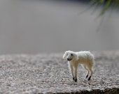 Needle Felted Waldorf  Tiny Lamb--Wool soft sculpture-needle felt by Daria Lvovsky- Ready to ship