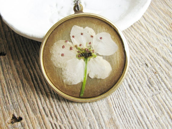 Botanical Jewelry Necklace Flowering Crabapple Blossum Flower Pressed Flowers Resin Antique Brass Chain - Spring