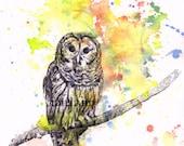 Owl Art Print Animal Watercolor Painting Owl Art Print 8 X 10 Owl Nursery Art Wall Decor Owl Print Nursery Decor Art Print Farmhouse Decor