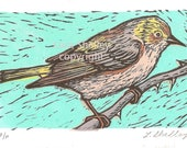 Cape May Warbler - Bird Linocut -  Hand Printed