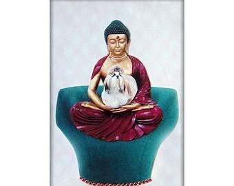 shih tzu, dog art, pet portrait, turquoise maroon, animal, pet collage, home decor, buddha, shabby chic, tagt team