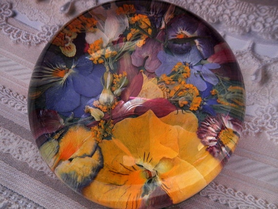Colorful Colorado-Sentimental Favorite Colorado Flowers-Colorado Window Into The Garden Dome Glass Pressed Flower Paperweight