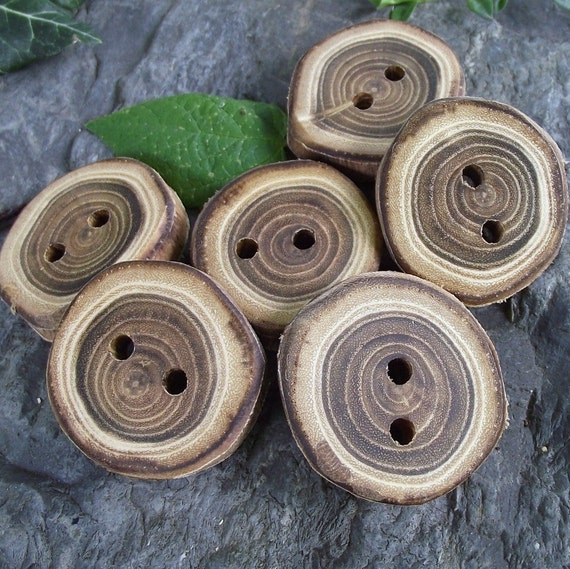 Wood Buttons - 6 Wooden Locust Tree Branch Buttons - 1 1/4 inches, 2 holes, For Journals, Pillows, Purses, Knitting and Crochet