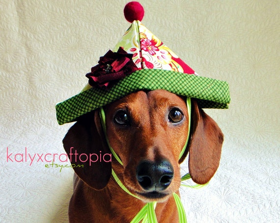 Wonderland Garden Tea Party Birthday Hat for Dogs - Kiwi Green and Fuschia Tula Pink