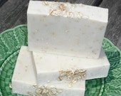 Neem Oil Oatmeal Soap / Sensitive Skin / Handmade Cold Process Soap