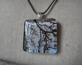 Glass Tile Photo Necklace - Tree Canopy