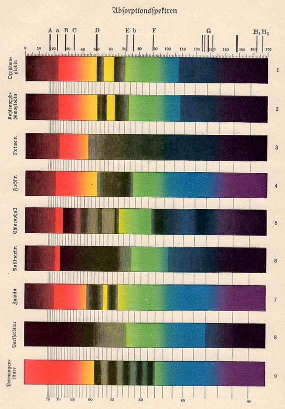 1894 color spectral analysis absorption original antique science print no 2