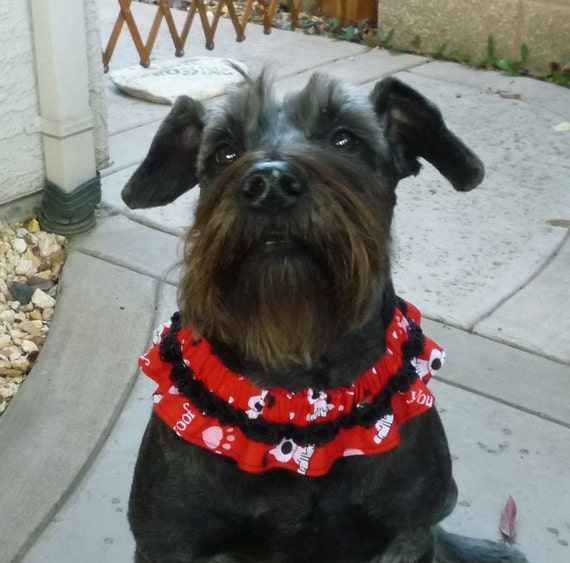 I Woof You Dog Scrunchie Necklace with velvet ribbon trim - L - TRY ME PRICE