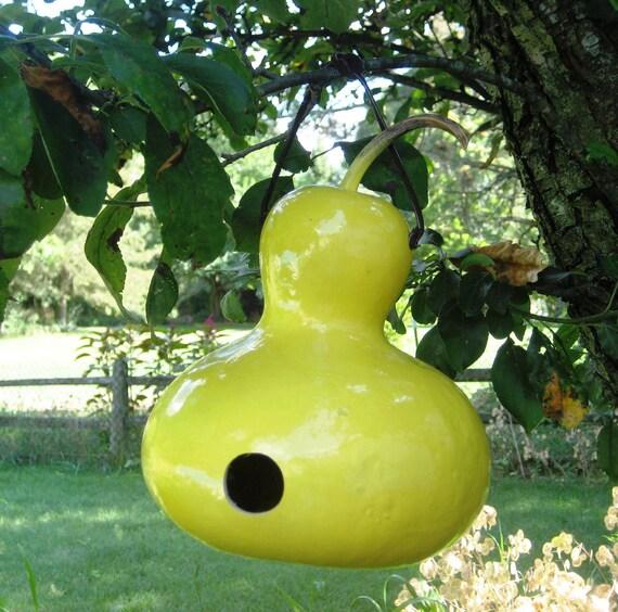 Sunshine Yellow Birdhouse Gourd