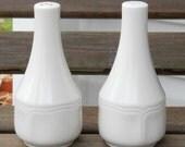 Vintage Salt and Pepper Shakers Minimalist White Sleek