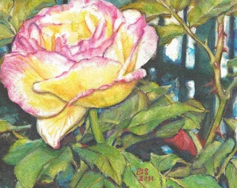 Set of 8 blank note cards featuring KEEGAN'S ROSE painting