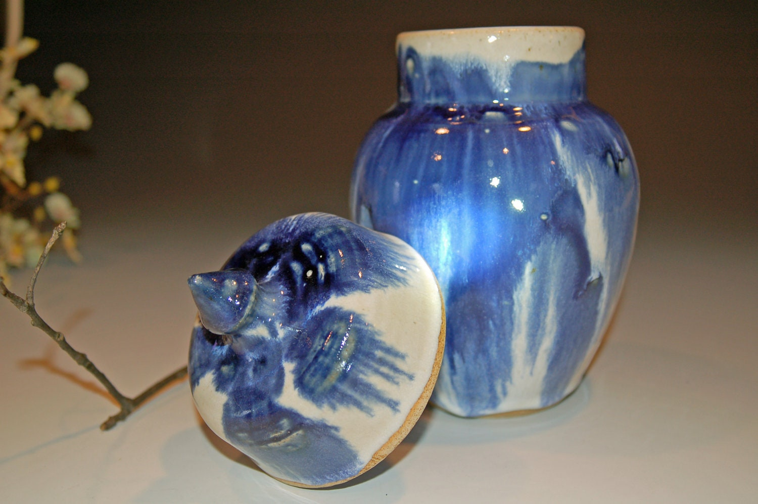 Blue And White Ceramic Cookie Jar Ceramics And Pottery Home