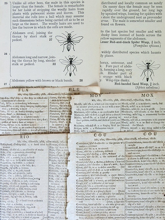 Vintage paper pack, 31 pages 1790s to 1970s, dictionary, entomology, gazetteer and sci-fi pages for altered art, mixed media art etc.
