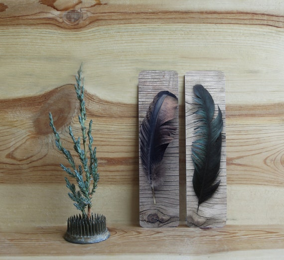 Last Minute  Holiday Stocking Stuffer Feather Bookmark Art Photography FOUR  Feather Bookmarks