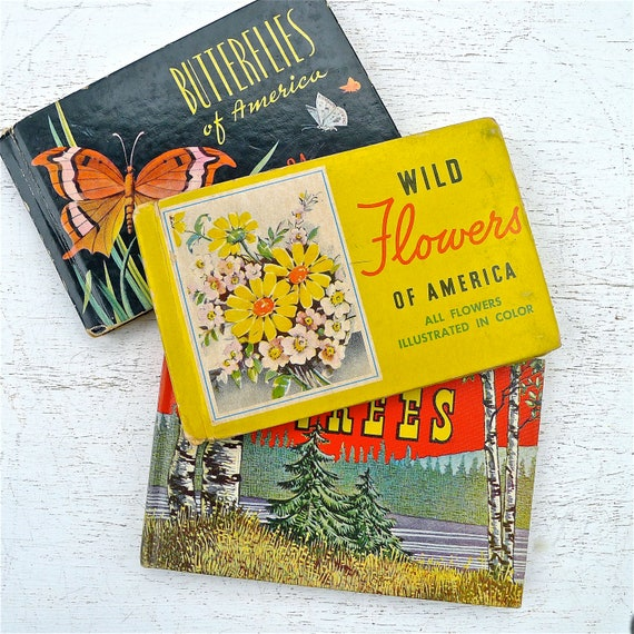 Vintage Color Illustrated Books, Butterflies of America, Red Book of Trees, Wildflowers of America 1930-40's
