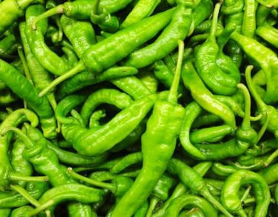 Pepper, Long Green Korean  Hot Pepper Seed - Essential Pepper for Making Fabulous Sauces or Spicy Food - Especially Kimchi