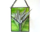 Air plant stained glass holder lime green modern contemporary wall planter home decor