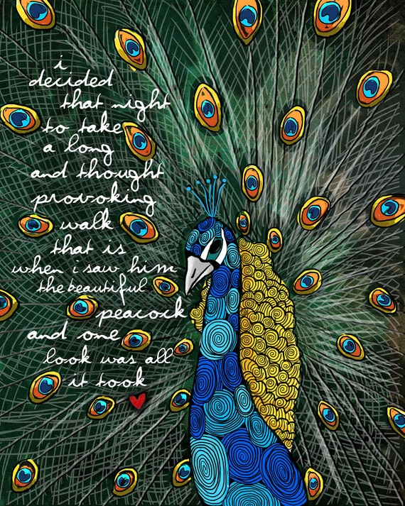 The Peacock / original illustration ART Print SIGNED / 8 x 10 / NEW