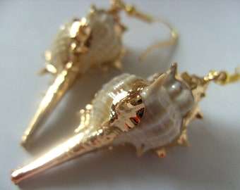 Gorgeous, Frog shell, Shell,cream, beige, white, gold plated, earrings, by NewellsJewels on etsy