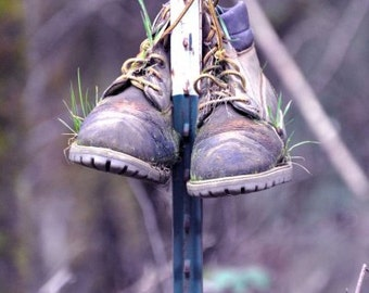 Rustic Boot Decor, Just Hanging Around, Abandoned Boots Photo, Grass Growing inside your Old Boots Print, Purple Nature Art,8x12,16x24,12x18