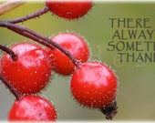 Winter Berries, Thankful, Greatful, Facebook Cover Image as DIGITAL DOWNLOAD, Instant Download