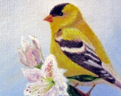Gold Finch print with Rhododendron flower 5 x 7 Giclee